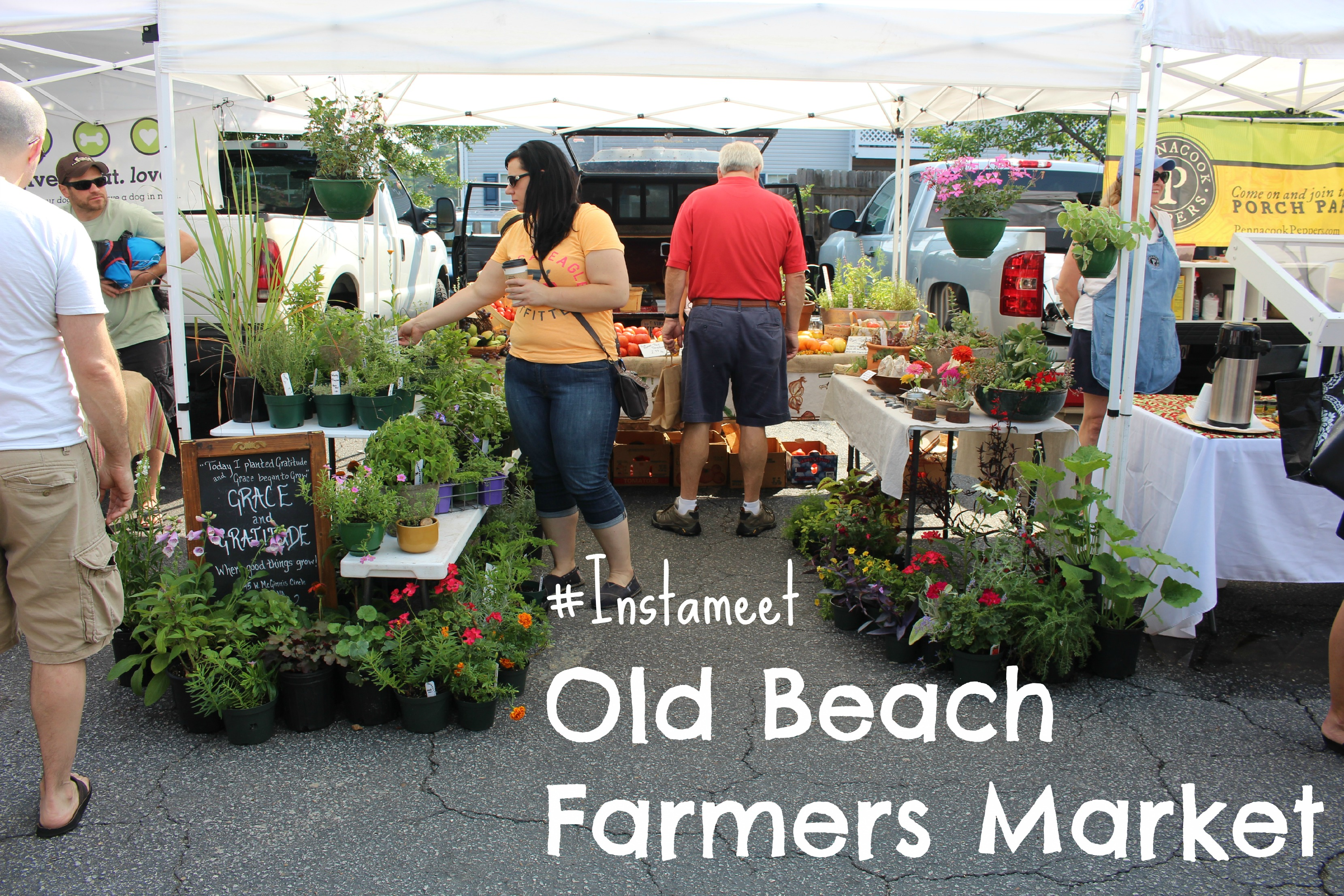 #Instameet at Old Beach Farmers Market