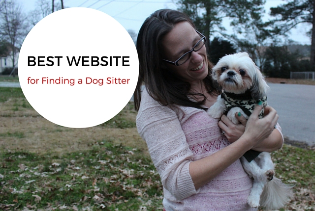 The Best Website for Finding a Dog Sitter