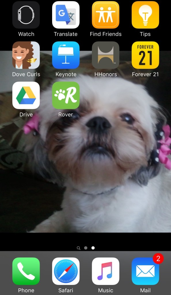Screenshot, Shih Tzu, Rover app