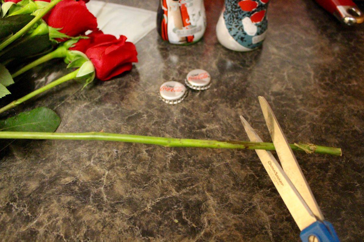 Unique-Glass-Bottle-Flower-Vase-Naturally-lam-Red-Roses-Diet-Coke-Scissors